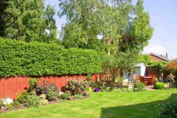 Jardin paysager avec une clôture bois et végétale