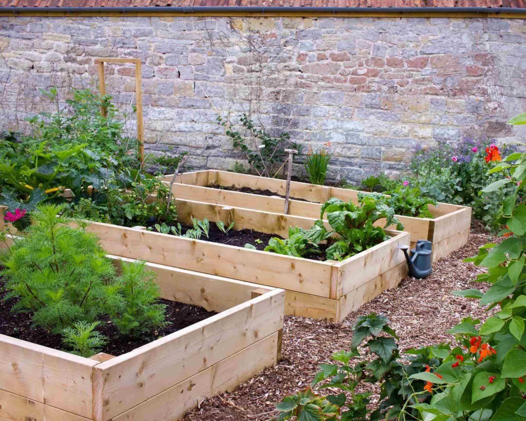 Jardin potager lutte contre les mauvaises herbes et cailloux