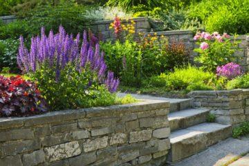 Jardin fleuri, muret de pierre sur un terrain en pente