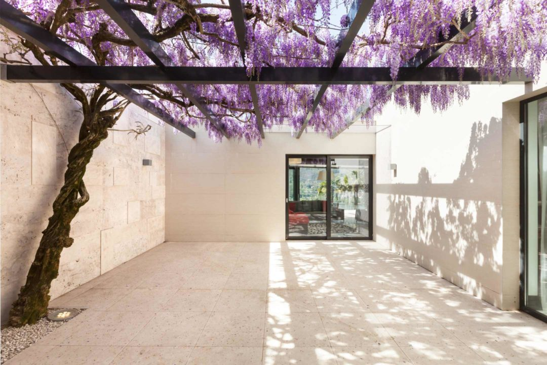 Cour intérieure lumineuse d'une maison avec glycine