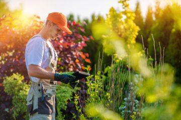 Paysagiste en plein travail dans un jardin