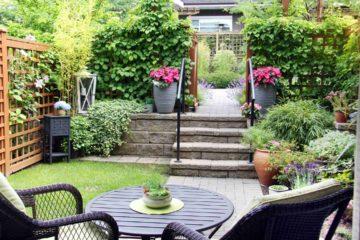 Petit jardin de maison avec plantation verticale