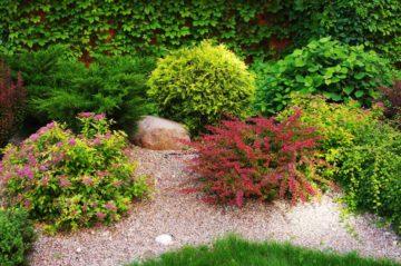 Jardin mélangeant graviers et plantes