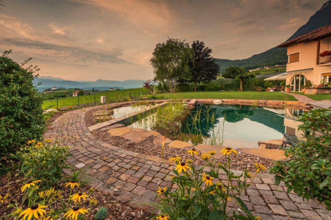 Belle piscine naturelle dans une propriété