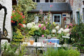 Beau jardin fleuri et coloré dans maison