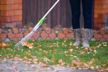 Ramassage des feuilles mortes dans un jardin