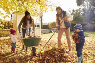 Un couple et ses enfants ramassent les feuilles mortes dans le jardin