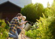 Un père et son enfant arrosent des plantes le long d'une allée piétonne d'un jardin