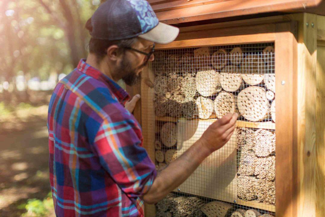 Un homme confectionne un hôtel à insectes