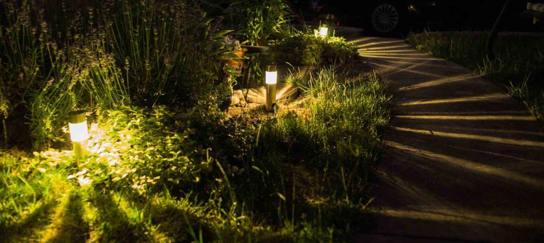 Lampes solaires illuminant un jardin la nuit