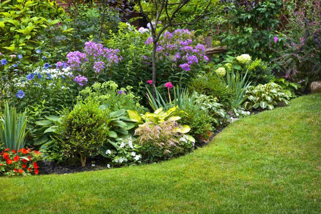 Un talus dans un jardin joliment aménagé et fleuri