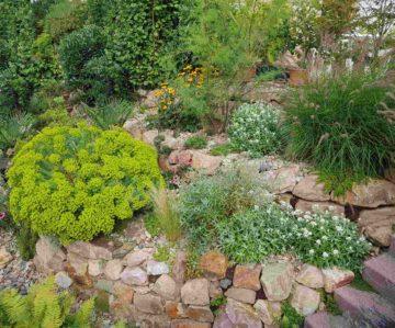Enrochement dans un jardin paysager avec pierres et plantes