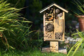 Hôtel à insectes installés dans un jardin