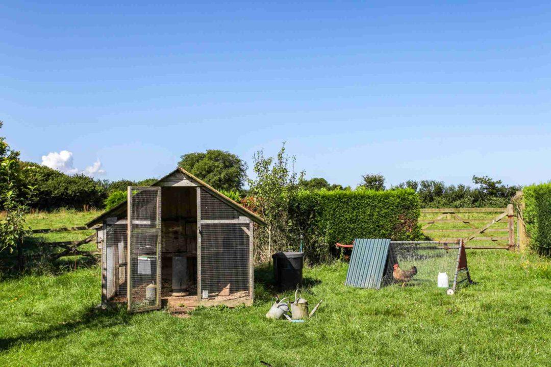 Un poulailler installé dans un jardin provatif