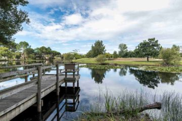Un ponton sur un lac dans un propriété