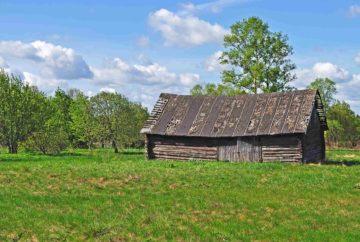 Une vieille grange en bois sur un jardin