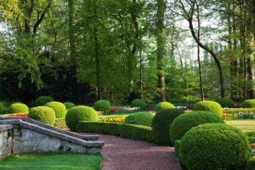 Un jardin à la française dans une belle propriété