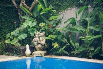 Un jardin et une décoration tropicales près d'une piscine