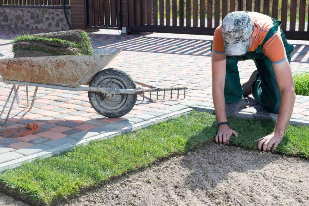 Un jardinier est en train d'installer du gazon dans une résidence privée