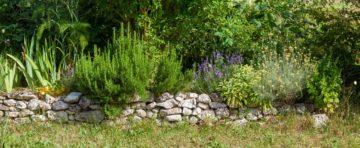un jardin paysager méditerranéen positionné sur un remblai