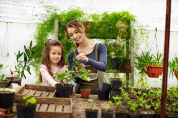 Une mère et sa fille jardinent dans une serre