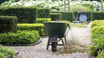Une brouette dans un jardin en cours d'entretien