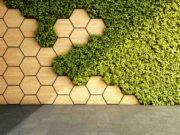 Un mur extérieur habillé de bois et de végétaux