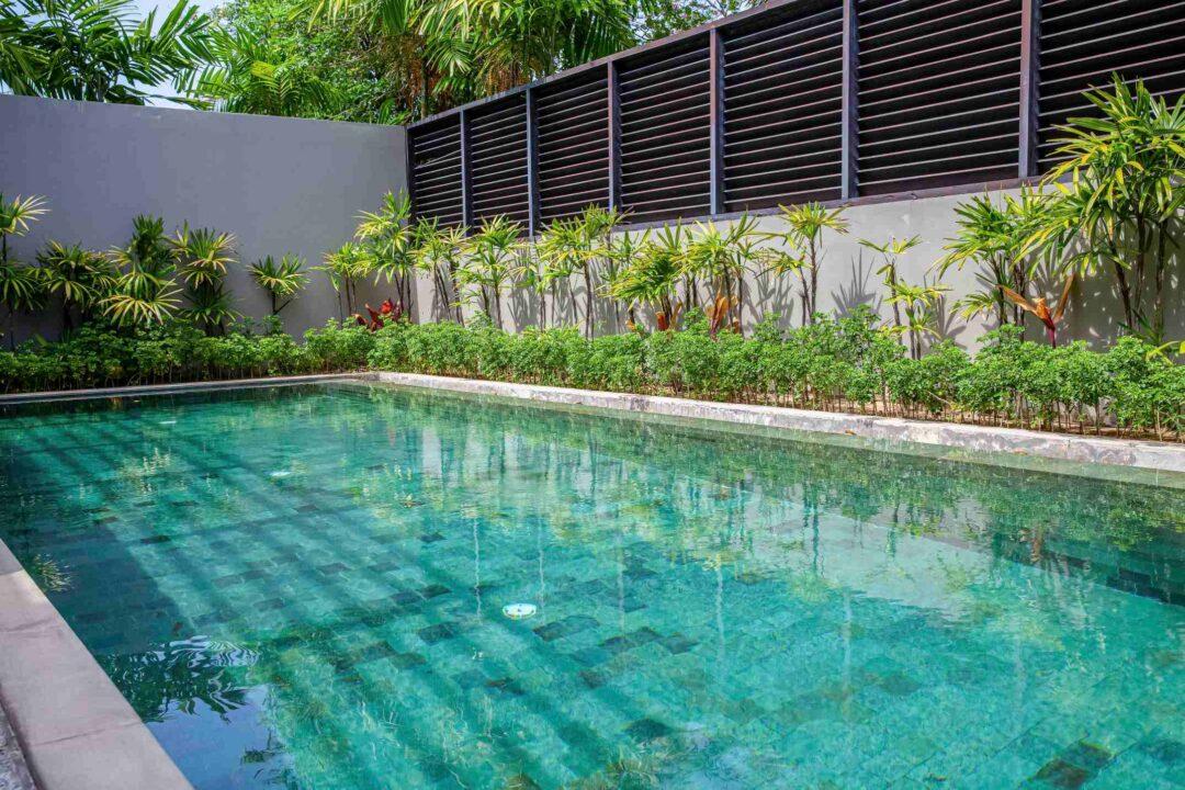 Une belle piscine dans un jardin avec plantes et arbustes exotiques
