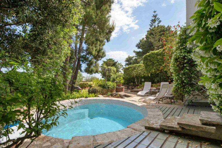 Une belle mini-piscine avec margelle en pierre naturelle dans un beau jardin paysager