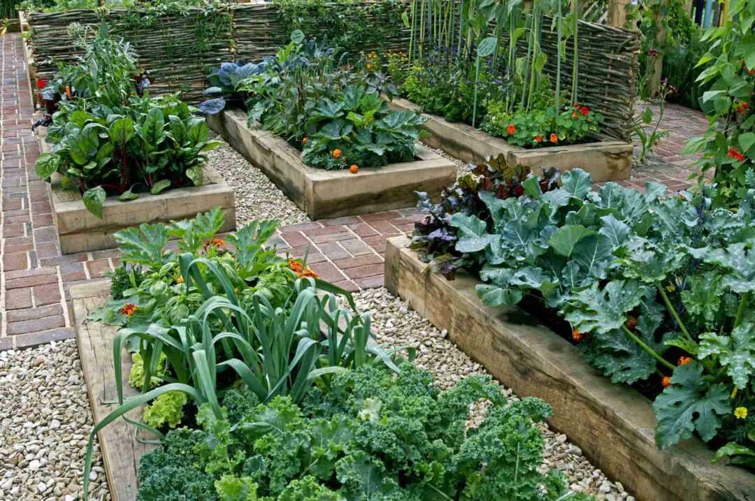 Qu'est-ce qu'un keyhole garden ou jardin en trou de serrure ?